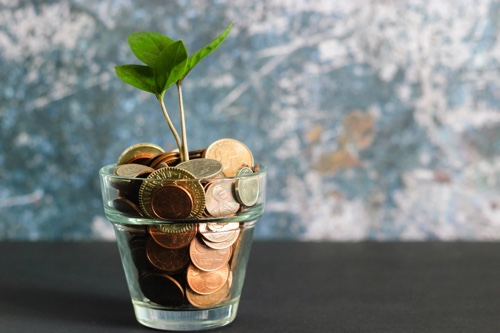 money-in-a-plant-pot